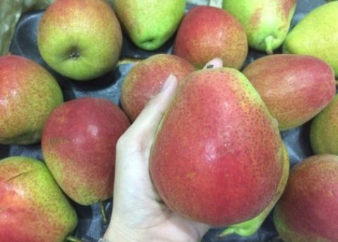 Cảnh báo! Nếu bạn chưa biết cách mua hoa quả nhập khẩu, bạn PHẢI XEM bài này