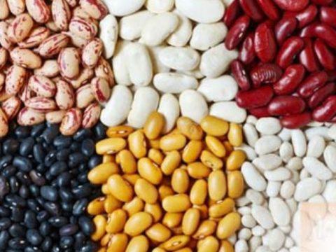 Top 4 thực phẩm đồ khô thuộc họ hàng nhà đậu có lợi cho sức khỏe