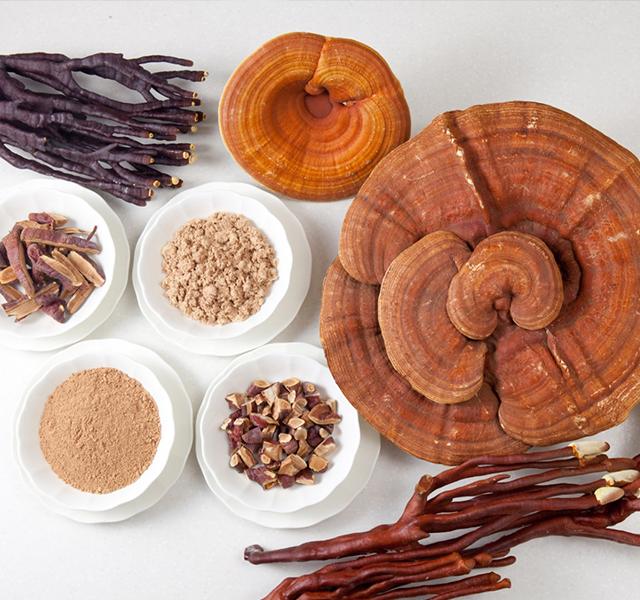 chữa bệnh gout bằng nấm linh chi