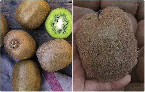 Phân biệt kiwi trung quốc và kiwi new zealand nhập khẩu