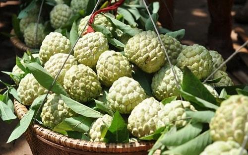 quả na - đặc sản trái cây thuần Việt Nam